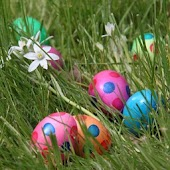 Easter Eggs Wallpapers HD FREE