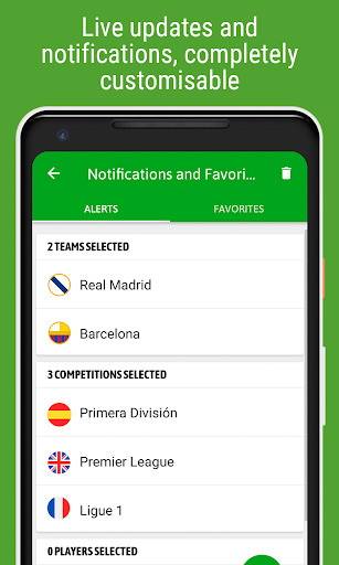 BeSoccer - Soccer Live Score screenshot 4