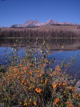 Photo: Sawtooth Mountains near Redfish Lake, Idaho (August 2005)