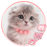 App Cute Kitty Cat Launcher Theme Live HD Wallpapers 1.0 APK for iPhone