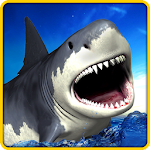 Angry Shark Simulator 3D Icon