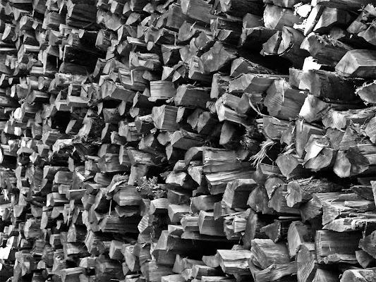 Il muro di legno di Gattorosso