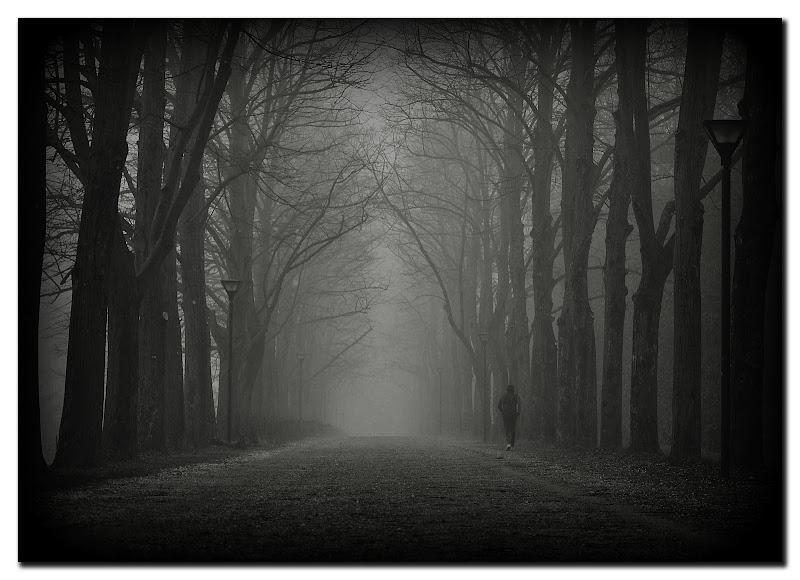 Nebbia al Parco... di Max66