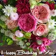 Birthday Greeting Cards. Flowers. Social App apk
