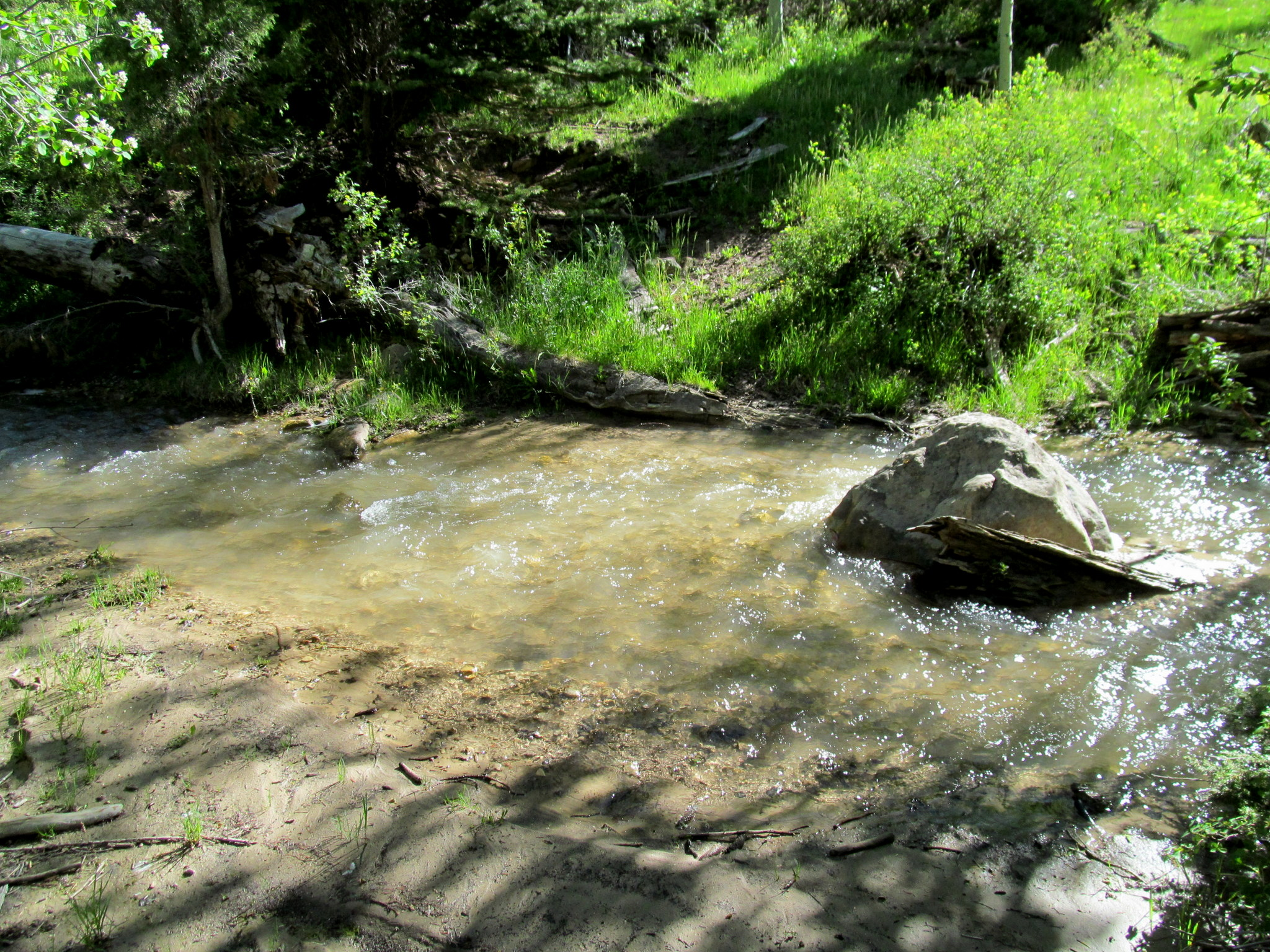 Photo: Second stream crossing