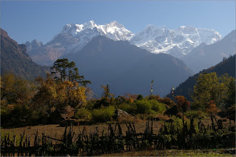 Photo: 11 XI 2011 Widok z Timang na Manaslu