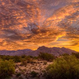 Mountain Sunrise by Charlie Alolkoy - Landscapes Mountains & Hills ( arizona, tucson )