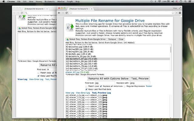 Multiple File Rename for Google Drive