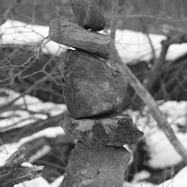 Winter wonder by Marsha Grimm - Black & White Landscapes ( snow, winter, stones, black and white )