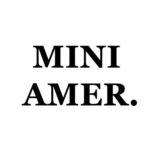 MINI AMER. file APK Free for PC, smart TV Download