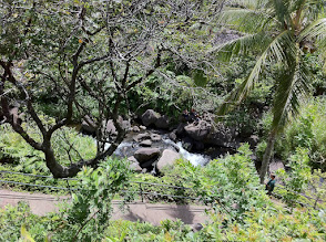 Photo: 'Iao Valley State Park