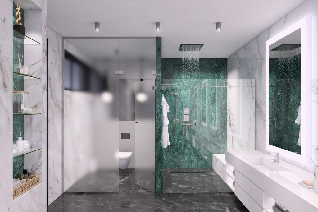 Make Use of Frosted Glass Shower Doors to Reflect More Light