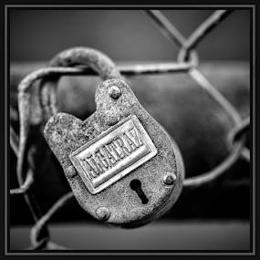 by Judy Rosanno - Black & White Objects & Still Life ( love lock bridge, san antonio )