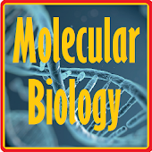 Basic Molecular Biology
