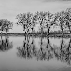 by Željko Salai - Black & White Landscapes