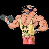 Gym Rat 5x5