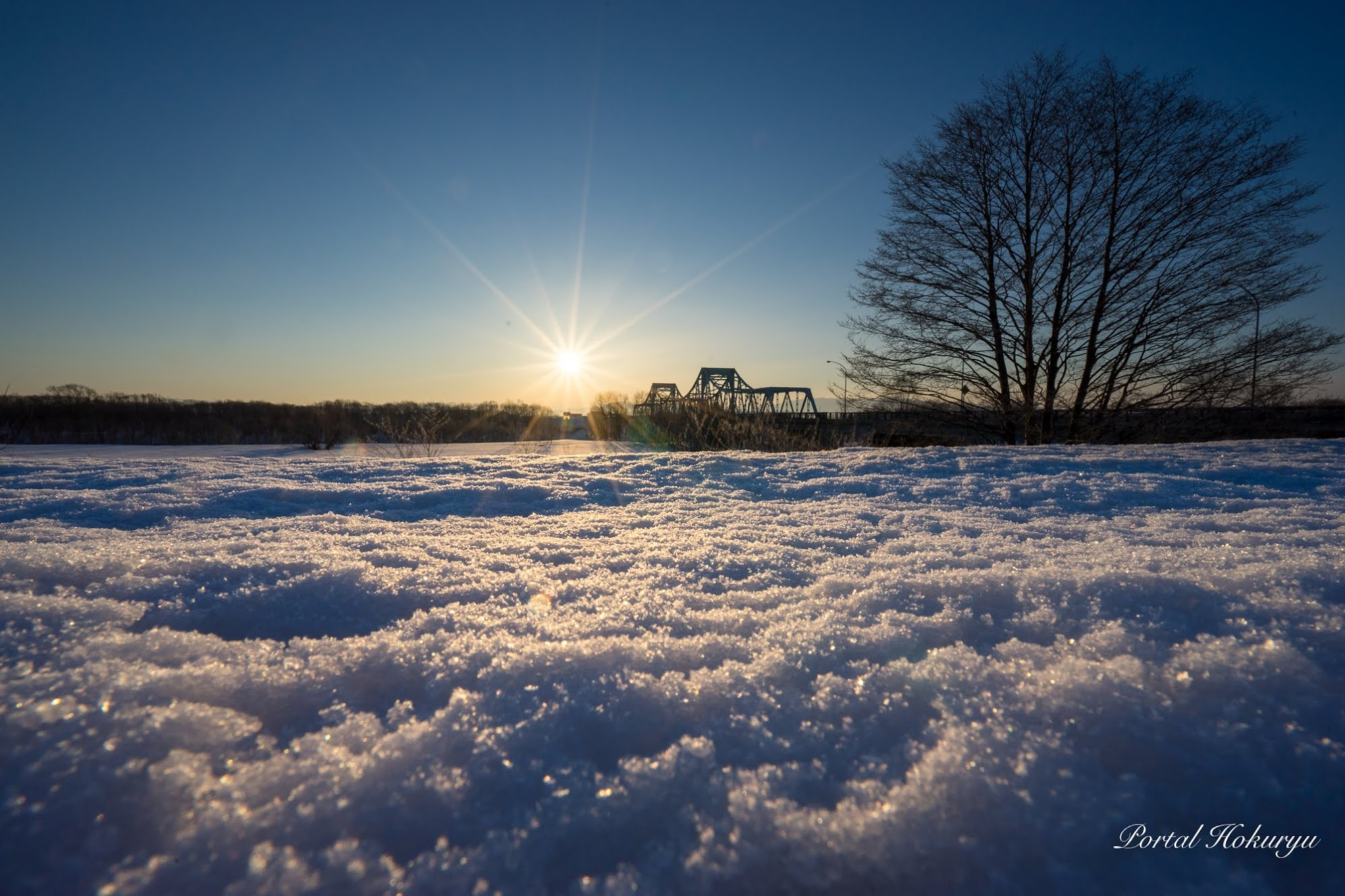 氷りつく雪