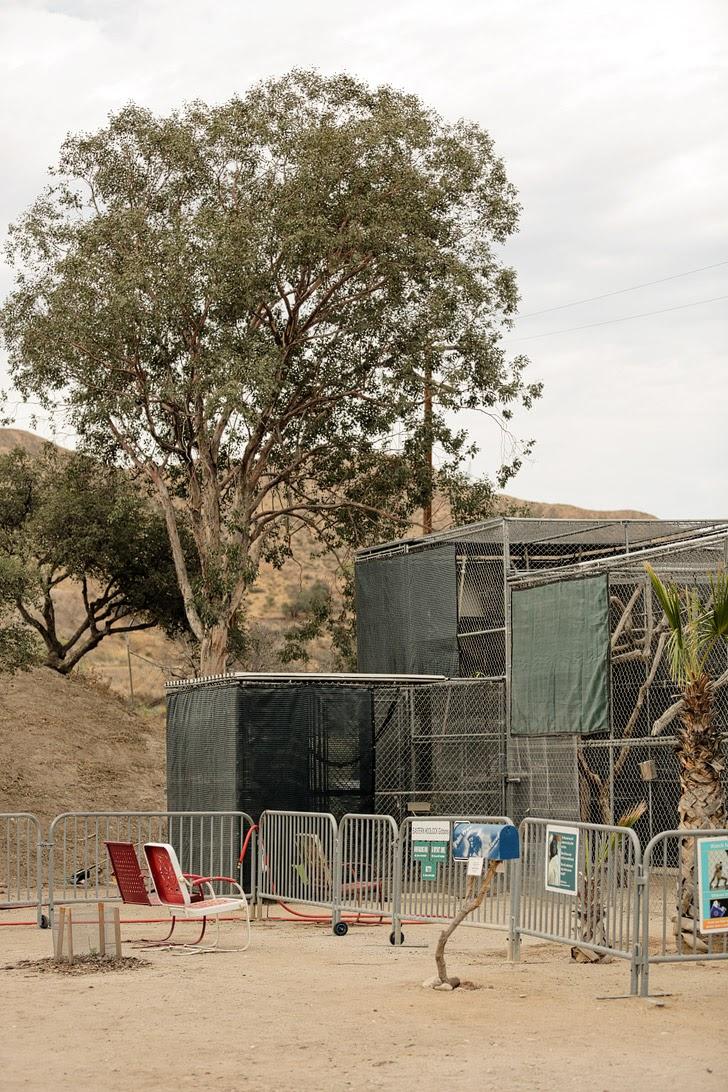 Gibbon Conservation Center in Santa Clarita CA.