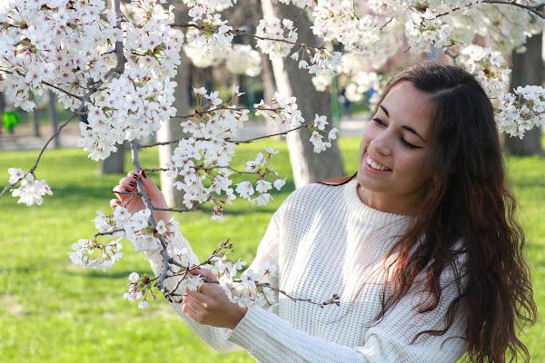 Cornice di primavera di Cristina Di Falco