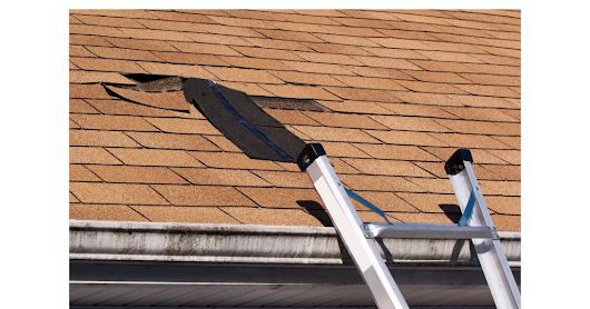 Roof Repair Tips: How to Identify the Presence of Leaks in Your Roof - Google Drive