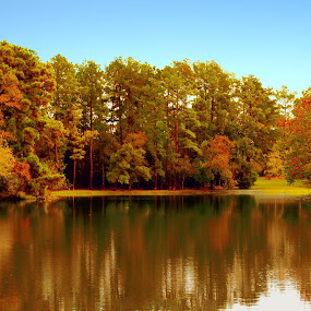 Reflection of Fall by Jan Davis - Landscapes Waterscapes (  )