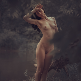 from the heat by Dmitry Laudin - Nudes & Boudoir Artistic Nude ( heat, beauty, grass, sunset, yellow, river, nude, girl, evening, body, summer )