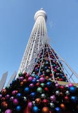 Photo: 2012年12月19日 ダブルツリー  クリスマスツリーwithスカイツリー