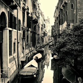 Venice by Cristiana Chivarria - Travel Locations Landmarks ( venice, boat, italy, canal )