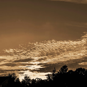 Sunset in Sepia by Frank Matlock II - Landscapes Sunsets & Sunrises ( prime, sepia, b&w, sunset, black & white, flares, natural )