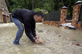 Photo: A resident holds a fish as he walks  through flood-water  in the Felsohamor district of Miskolc, about 180 kms east from Hungarian capital Budapest on May 16, 2010. One man died after a soaked sand wall fell on his house because of heavy storms causing flooding in the northeastern city of Miskolc.   The middle-aged man died after a soaked sand wall fell on his house. The city of Miskolc and its region were hardest hit by the storms where several streets are still under water after two local rivers started flooding.    Several families had to be evacuated and sand bags are used to keep the flooding under control, spokesman of the fire services said.  AFP PHOTO / PETER KOHALMI