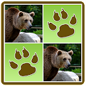 Wild Animals Memory Game icon