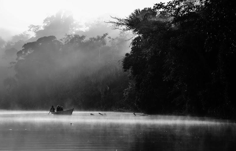 alba amazzonica di arketettie