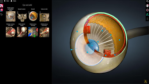 Anatomy Learning - 3D Atlas screenshot