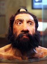 "Photo: Neanderthal reconstruction of a skull. Google is trying to ""tag"" the person in the picture.  99.7% of the base pairs of the modern human and Neanderthal genomes are identical."