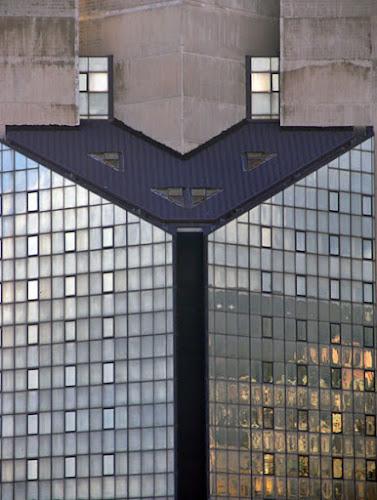 """La Grande """"Y"""" di stellina2056"""