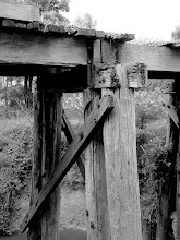 Photo: Year 2 Day 154 -  Old Tressle Bridge on the Rail Trail