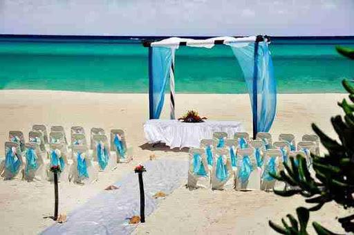 屋外の結婚式のアイデア