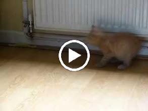 Video: Pontus playing :-)