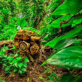 In the jungle - the mighty jungle by Kelley Hurwitz Ahr - Artistic Objects Industrial Objects ( waterfalls )