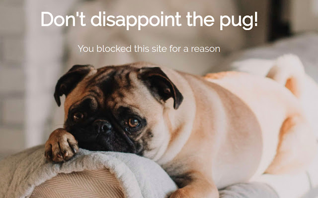 Focus - Block websites and Avoid Distractions