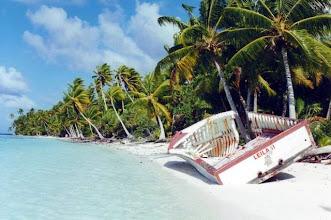 Photo: Tetiaroa, l'île aux oiseaux