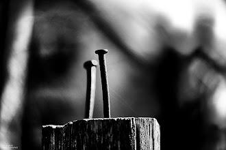 Photo: TWO RUSTY NAILS IN THE SUNLIGHT ...  guten morgen G+ ich wünsche euch einen schönen tag und einen guten start in die neue hoffentlich recht sonnige neue woche.  ich wish you a happy day and a good start in the hopefully sunny new week.  #10000photographersbwmonochrome  by +Robert SKREINERand myself                 #LeadingLinesMonday +Pam Boling +Andreas Levi +David Murphy +Elle Rogers +Michael B. Stuart +Simos Xenakis +All Things Monochrome #AllThingsMonochrome by +Charles Lupica and +Bill Wood #MonochromeMonday (+Monochrome Monday) Curated by +Hans Berendsen , +Jerry Johnson , +Steve Barge, +Dominique Hilbert , +David Orr and +Martin Heller #HQSPMonochrome +HQSP Monochrome by +Luis Vivanco +Dennis Freeland and +Johnny Minor #monochromeworld +Monochrome World #dofmonday by +Mara Acoma+Mark Hall+Alan Guo+Nigel Smith+DOFMonday #dailydepthoffield by +Vince Ong+Nuraini Ghaifullah+Virgil Cowen+f.a. fiebig+Daily Depth Of Field #fotoamateur by +Britta Rogge+Remo Primatesta+Karsten Meyer+Markus Landsmann+Scotti van Palm+Fotoamateur #promotephotography +Promote Photography #creative365project by +Takahiro Yamamoto+Jeff Matsuya+Creative 366 Project+G+ Weekly Theme Circles+G+ 365 Project #pixelworld +PixelWorld #breakfastclub by +Gemma Costa+Breakfast Club #PlusPhotoExtract by +Jarek Klimek