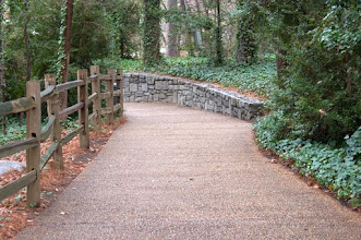 Photo: Peaceful Wooded Path