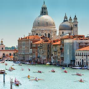 Venetian Regatta by Rory McDonald - Travel Locations Landmarks ( water, church, waterscape, sporting event, boats, santa maria della salute, dome, travel, race, canoes, travel photo, vista, venice, crane, regatta, oars )