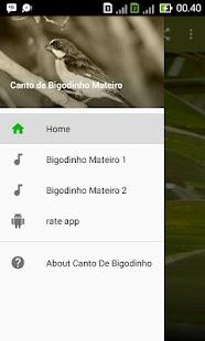 Canto de Bigodinho Mateiro - náhled