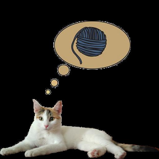 Zenka the cat widget