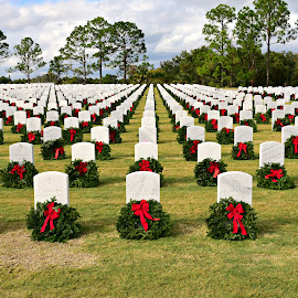 Honoring our Veterans by Ruth Overmyer - City,  Street & Park  Cemeteries (  )