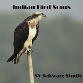 Indian Bird Sounds