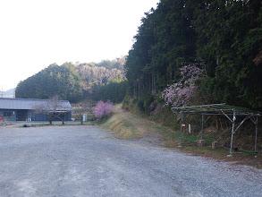 裏は喜桜山・額堂山への道