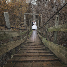 Wedding photographer Elena Mostovykh (Abrikatin). Photo of 26.11.2014